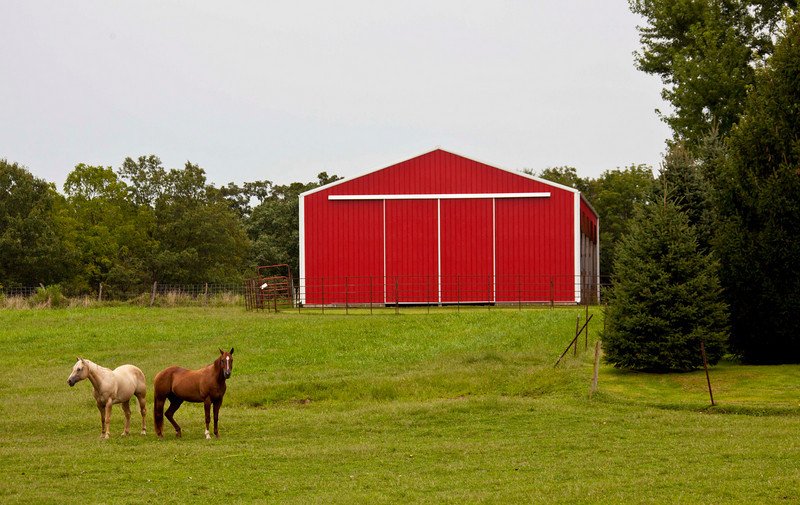 A red barn and two horses.