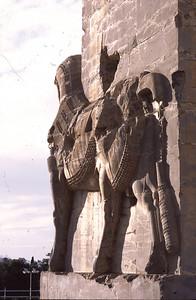 Persepolis-Bull