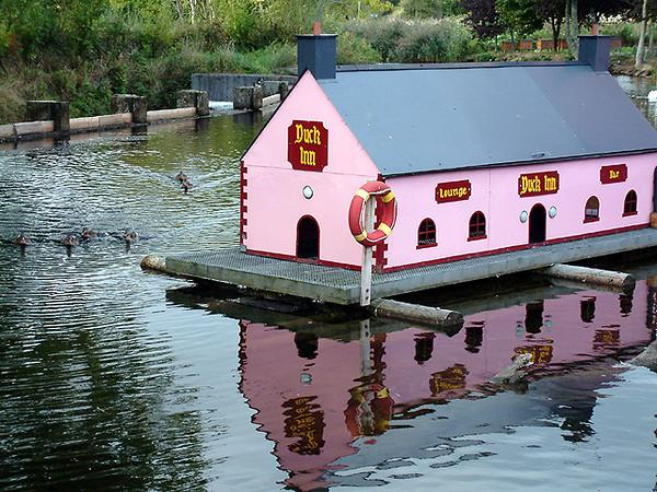 Limerick - Duck Inn