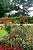 0154 Garden at Muckross House, Killarney National Park, Killarney, Irleand