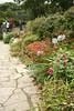 0155 Garden at Muckross House, Killarney National Park, Killarney, Ireland