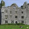 Leamenagh Castle