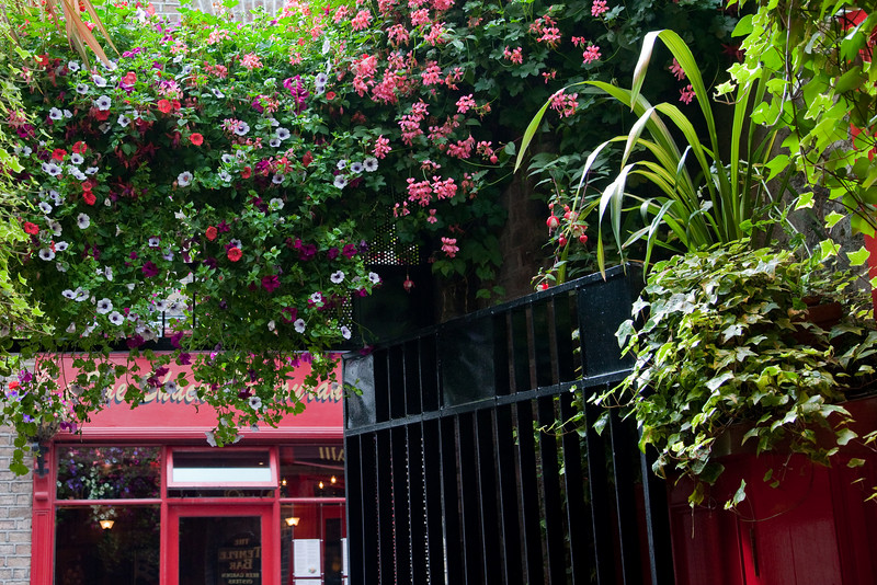 Leaving the Temple Bar pub and again the ever present flowers.