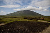 This is the same shot of the unhappy turf farmer in a bit wider perspective taken through the bus window as we pulled away in fear of our lives.