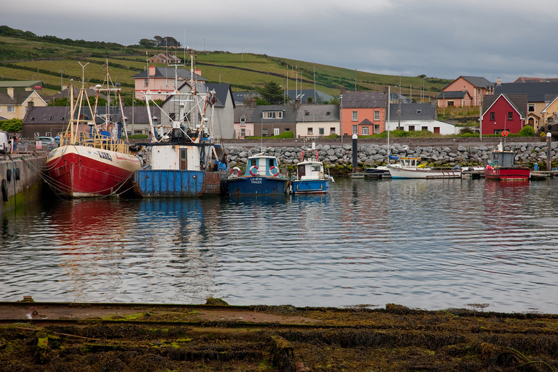 We arrive in Dingle, a seaport town.