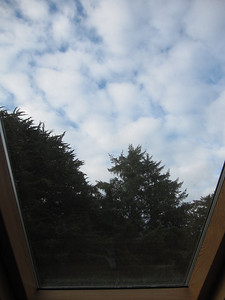 View from the skylight in my room