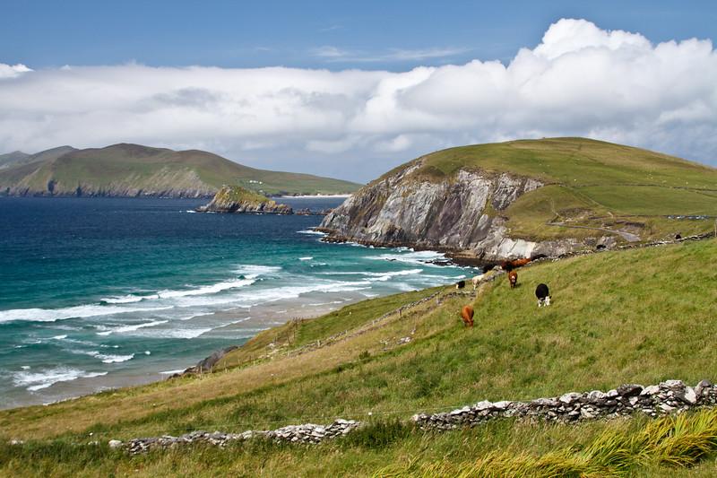 Ireland_070211_161