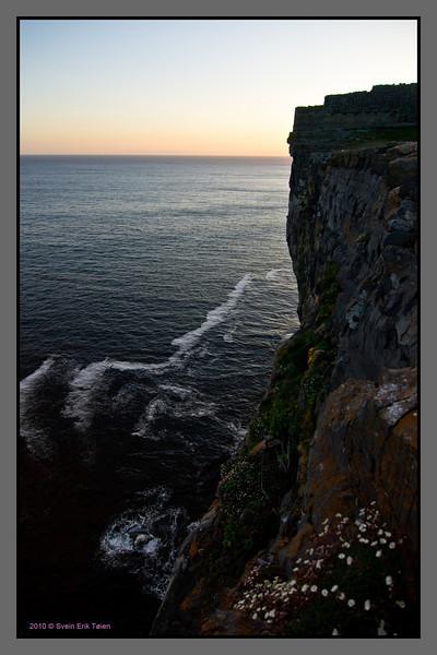 Flowered abyss<br /> Cliffs at Dun Aonghasa