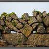Stone and leafs<br /> Limestone fence, Kilronan