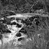 River in Killarney National Parc.