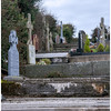 Ui Bhrian, the Kings of Dal gCais are buried at Saint Brigid's Well,