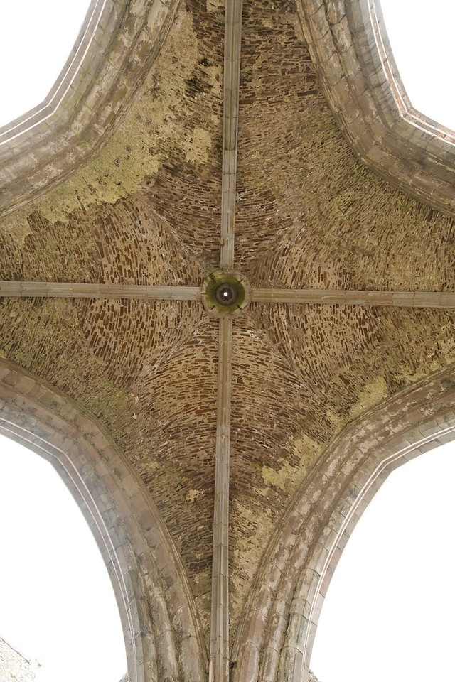 Ceiling, Rock of Cashel