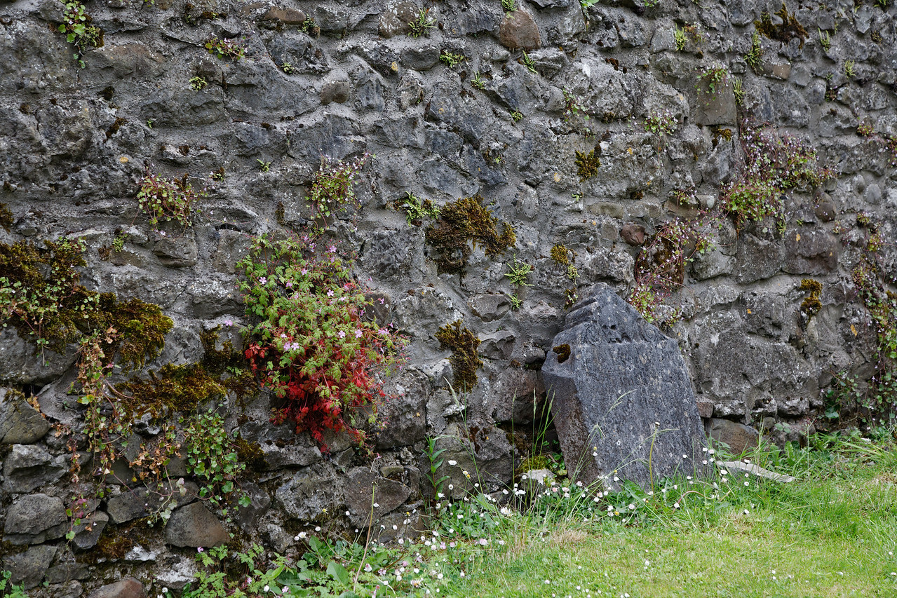 Graves at St. Canice's Cathedral, Kilkenny