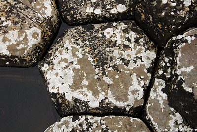 Disyunción columnar de basalto