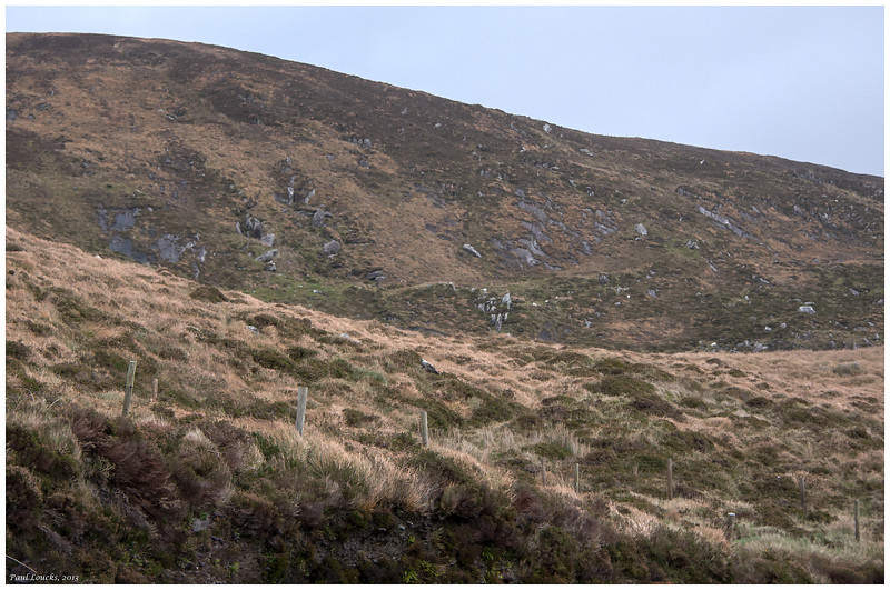 Rugged mountainside along the An Mhor Chouaird or Ring of Kerry