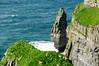 Ireland-9539