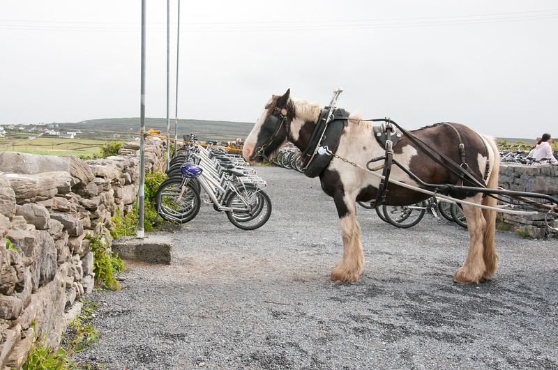 Ireland-9591