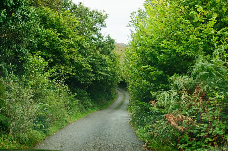 Ireland-9370