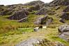 Ireland-9400