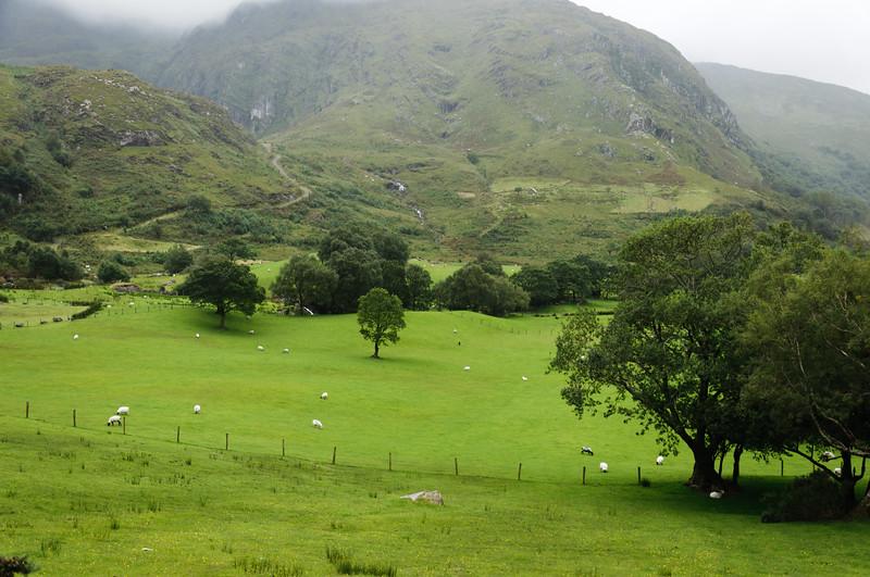 Ireland-9416