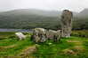 Ireland-9443