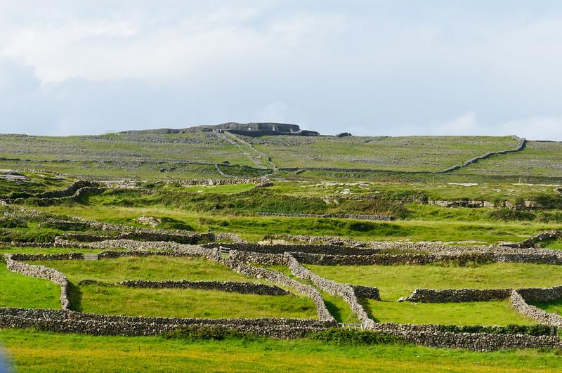 Ireland-9572
