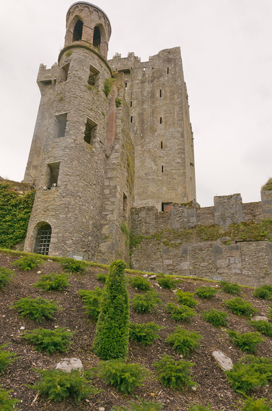 Ireland-9292