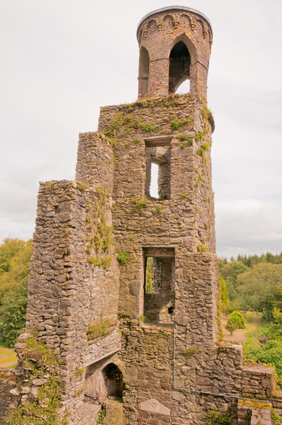 Ireland-9295