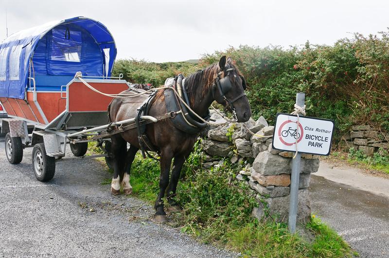 Ireland-9589