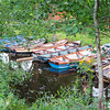 Boats tied to sides of canal leading to Ross Lake
