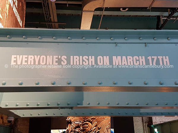 Everyone's Irish on March 17th, sign.