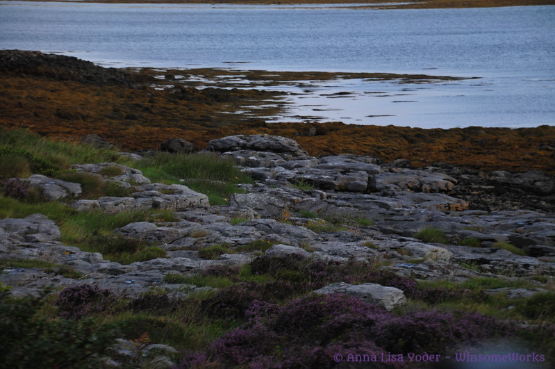 Low tide on Galway Bay