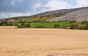 Grain fields near The Burren, near West coast of Ireland