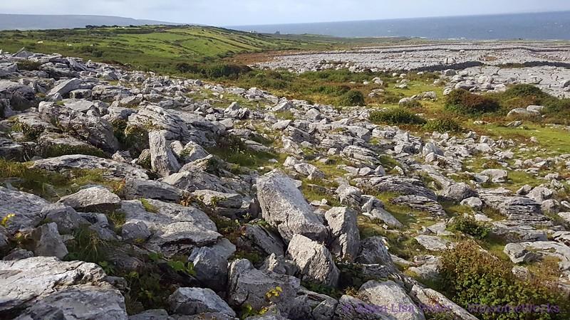 The Burren near West coast of Ireland (Galway Bay in background)