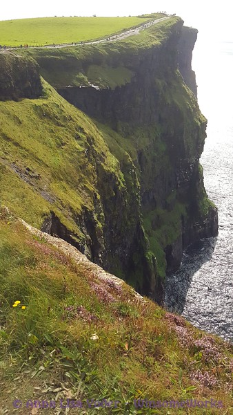 Looking South from top of cliffs