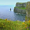 Panorama of Cliffs of Moher, looking North. Branaunmore Sea Stack is the pointed rock in middle.