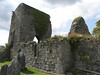 Ardcrony Castle and graveyard, Co. Tipperary