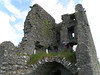 Ardcrony Castle, Co. Tipperary