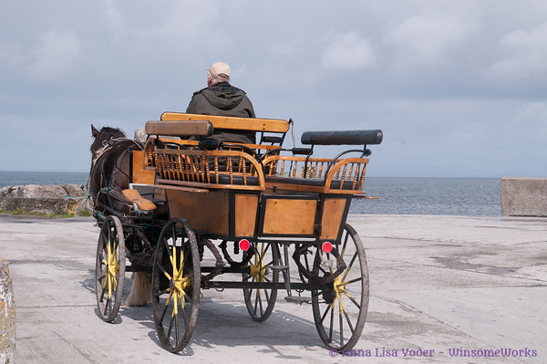 Horse & trap for touring Inis Oirr