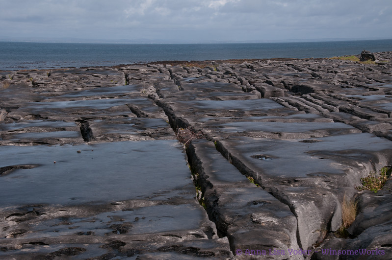 View of Atlantic over grikes & clints in stones of the burren on Northwest side of Inis Oirr (this was once seabed)