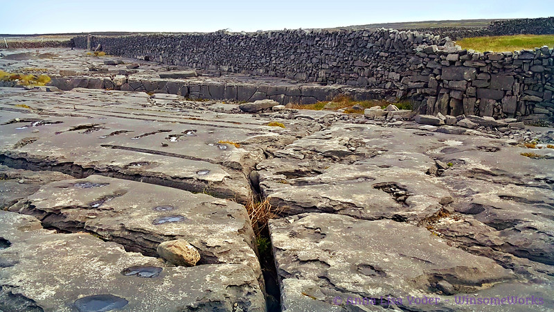 """The Burren, (karst landscape) on Inis Oírr, one of the Aran Isles in the Atlantic on west coast of Ireland. Grikes & clints run along the limestone """"pavement"""". This was once undersea."""