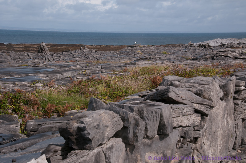 View from Northwest side of Inis Oirr