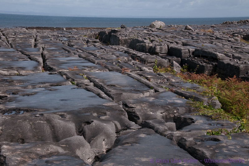 The Atlantic beyond grikes & clints in stones of the burren on Northwest side of Inis Oirr