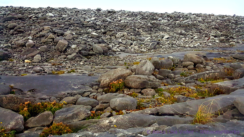 "Stones of the burren on Northwest side of Inis Oirr  - info here: <a href=""https://en.wikipedia.org/wiki/The_Burren"">https://en.wikipedia.org/wiki/The_Burren</a>"