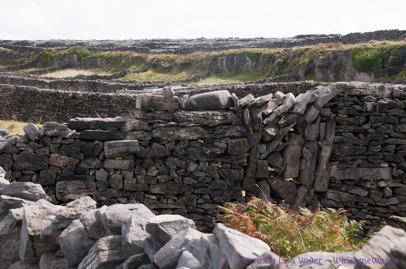 Old stone walls traversing Inis Oirr