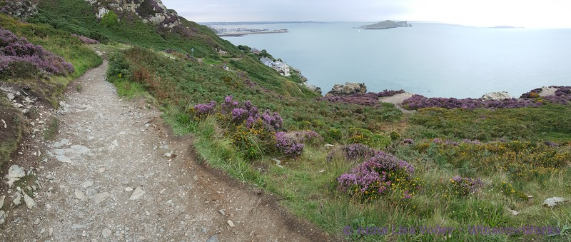 Pano of Cliff Path with Kilrock, Balscadden Bay & Ireland's Eye