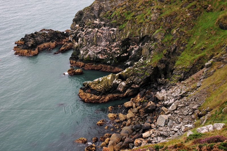Cliffs along Howth Head