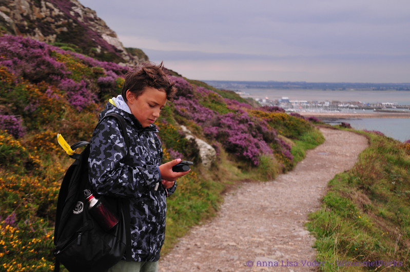 Xavier checking map on Cliff Path - Howth