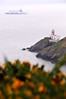 Baily lighthouse with ship in Irish Sea (gorse in foreground)