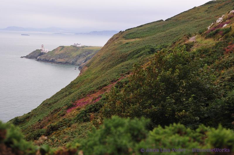 Coastline on Howth Head